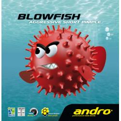 """ANDRO """"Blowfish"""" Soft"""