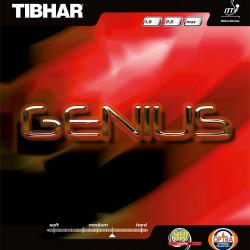 """TIBHAR """"Genius"""""""
