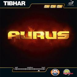 """TIBHAR """"Aurus"""""""