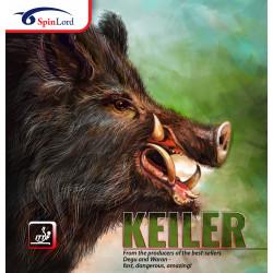 """SPINLORD """"KEILER"""" Picot entre Mi-Long et Court"""