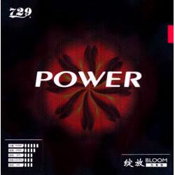 """Friendship """"729 Bloom Power"""""""
