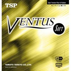 "TSP ""Ventus Soft"""