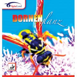 "SPINLORD ""Dornenglanz"" Picot Long"