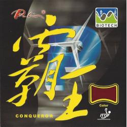 """PALIO """"Conqueror Premium"""""""