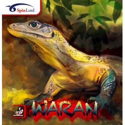 "SPINLORD ""WARAN"" Picot Court"